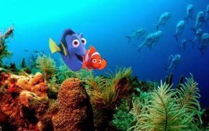 Popcorn Flicks in the Park: Finding Nemo