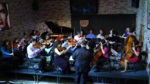 FSYO Chamber Orchestra