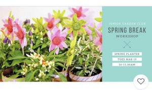 Spring Planter - Junior Garden Club