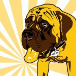 8th Annual Pints n' Paws Craft Beer Festival