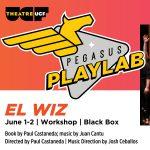 Pegasus PlayLab: El Wiz