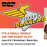 Pegasus PlayLab: It's a Small World (or The Robot Play)