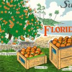 Sweet, Fresh, Juicy: Florida Citrus in Art and History