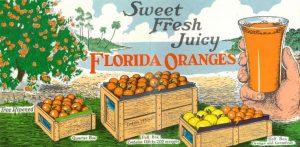 Sweet, Fresh, Juicy: Florida Citrus in Art and His...