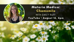 Materia Medica: Chamomile
