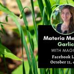 Materia Medica: Garlic