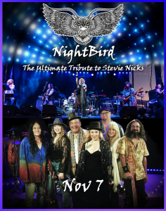 NIGHTBIRD SWFL-THE ULTIMATE TRIBUTE TO STEVIE NICK...