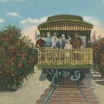 Trains, Planes, Automobiles: Moving Maitland