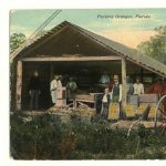 Wish You Were Here: Historic Postcards of West Orange County