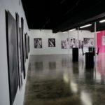 Orlando Creates | Concert & Mural Contest