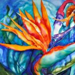 Symbiotic Dance: Marianna Hamilton-Ross