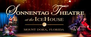 Icehouse Theatre, The