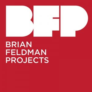 Brian Feldman Projects